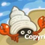 つぶ貝カニ