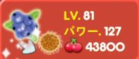 野菜レベル81