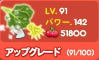 野菜LV91